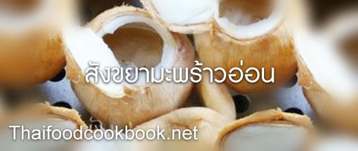 วิธีทำสังขยามะพร้าวอ่อน สูตรการทำสังขยามะพร้าวอ่อน